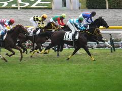 20141102 東京4R ノーブルクリスタル 15