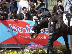20140316 中山6R ショウナンラグーン 06