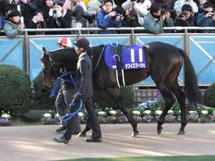 20131222 有馬記念 ラブイズブーシェ 01