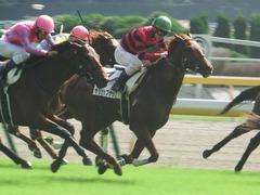 20181006 東京3R 2歳未勝利 ヤップヤップヤップ 17