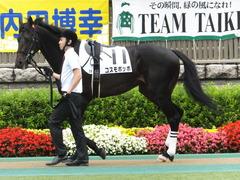20150614 東京3R 3歳未勝利 コスモポッポ 04