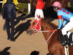 20170114 京都10R 北大路特別 4歳上牝馬1000万下 レーヌドブリエ 24