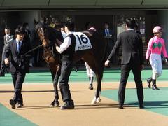 20131116 東京 サンドラバローズ10