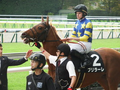20171111 東京10R 三鷹特別(1000) ブリラーレ 16