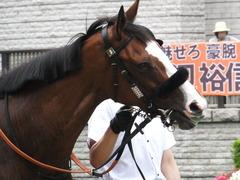 20170625 東京1R 3歳牝馬未勝利 プンメリン 06
