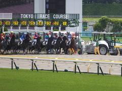 20150523 東京3R 3歳未勝利 コスモポッポ 14