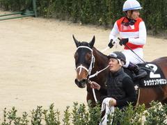 20150321 中山10R 韓国馬事会杯 ショウナンアポロン  17