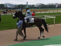 20160423 東京5R 3歳未勝利 アークアーセナル 18
