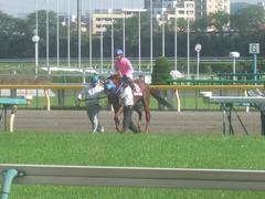 20120428 東京11R 青葉賞(G2)タムロトップステイ03
