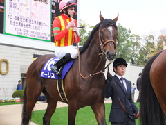 20151122 京都11R MCS(G1) モーリス 12