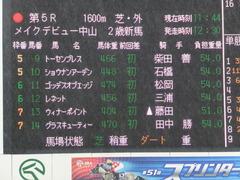 20170917 中山5R 2歳牝馬メイクデビュー ショウナンアーデン 01