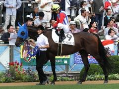 20150927 中山3R 3歳未勝利 タニオブキャップ 11