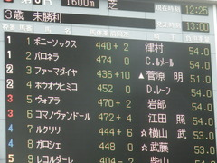 20190608 東京6R 3歳牝馬未勝利 ホウオウヒミコ 01