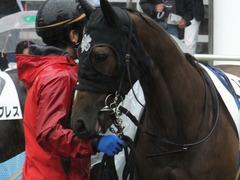 20170917 中山5R 2歳牝馬メイクデビュー ショウナンアーデン 08