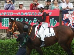 20190609 東京7R 3歳上1勝 ピンシェル 19