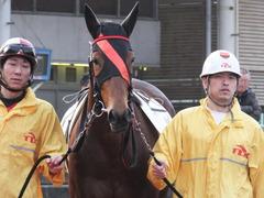 20151224 大井2R 2歳新馬 マルカンヒラリー 08