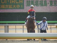 20190209 東京3R 3歳未勝利 シホノフォルテ 20