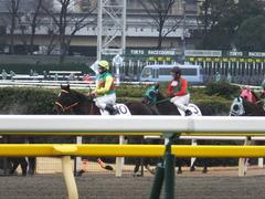 20160130 東京3R 3歳未勝利 アイルーロス 16