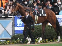 20150125 中山10R 若潮賞 モーリス 03