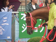 20180929 中山5R 2歳牝馬メイクデビュー オトナノジジョウ 12