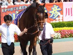 20150607 東京11R 安田記念(G1) モーリス 08