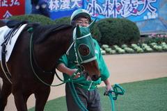 20191214 中山6R 2歳メイクデビュー トーセンマックス 02