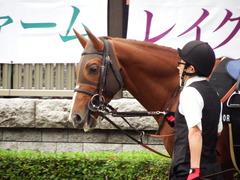 20171111 東京10R 三鷹特別(1000) ブリラーレ 07