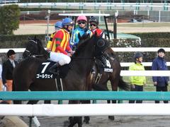 20140126 中山10R ゴールウェイ 12