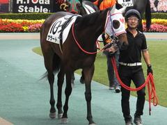 20170611 東京6R 2歳牝馬メイクデビュー サラート 08