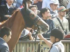 20190421 東京11R フローラS(G2) クラサーヴィツァ 10