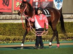 20180128 東京10R 早春S(1600) ホウオウドリーム 18