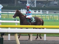 20161008 東京11R サウジアラビアRC(G3) クライムメジャー 22