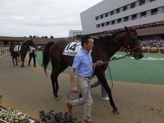 20160903 札幌12R (500) トーセンカナロア 08