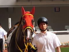 20161002 阪神8R (500) テイケイラピッド 04