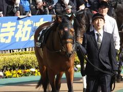 20150221 東京9R 4歳上1000万下 オウケンブラック 06