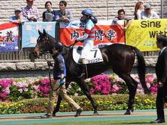 20150426 東京1R 3歳未勝利 ジュンコアー 09
