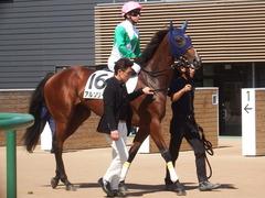 20190928 中山5R 2歳牝馬メイクデビュー アルソリート 13
