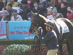 20151129 東京2R 2歳未勝利 ラルゴランド 11