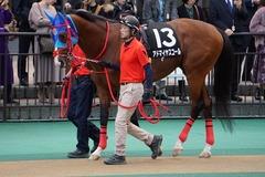 20191124 東京10R ウェルカムS (3勝) アドマイヤスコール 01