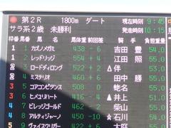 20151226 中山2R 2歳未勝利 カズノメガミ 01