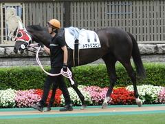 20140628 東京2R トマトリコピン 04