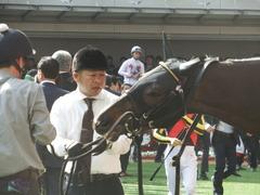 20180401 阪神11R 大阪杯(G1) トリオンフ 07