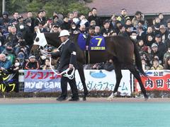 20161229 大井10R 東京大賞典(G1) サンドプラチナ 16