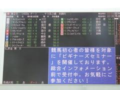 20180401 阪神2R 3歳未勝利 メジャーシャルマン 01