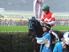 20141101 東京8R トレジャーマップ 08