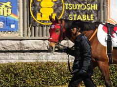 20150221 東京1R 3歳未勝利 フレンドマキシマム 03