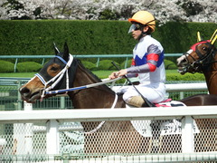 20180331 阪神3R 3歳未勝利 テンノカガヤキ 22