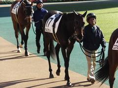 20151129 東京2R 2歳未勝利 ラルゴランド 05