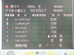 20190317 中山8R (500) ミッキーバード 01