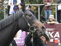 20151031 東京5R 2歳メイクデビュー ラルゴランド 09